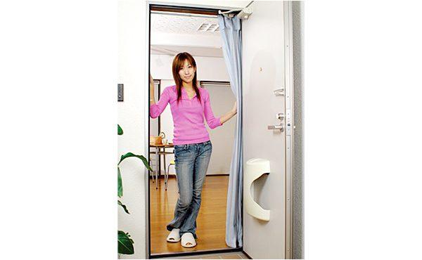 http://NEW室内がみえにくいドア用アミ戸%20外開き専用%20リングタイプ・伸縮ポール付き